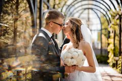 Elegant groom kisses a beautiful bride on the background of a greenhouse. Elegant groom in a festive suit kisses a beautiful bride on the background of Royalty Free Stock Photography
