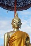 Elegant guld- Buddha Royaltyfria Bilder
