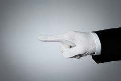 Elegant hand pointing Stock Image