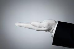 elegant hand som presenterar produkt något Arkivfoton