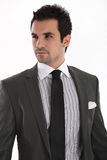 Elegant handsome man in suit Royalty Free Stock Images