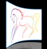 Elegant horse Royalty Free Stock Photo