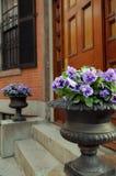 elegant ingång för dörr som inramniner den trädgårds- urnen Royaltyfria Bilder