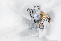 Elegant jewelry ring and orchid stock images