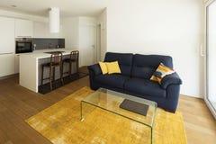 Elegant kök och vardagsrum i modern lägenhet fotografering för bildbyråer