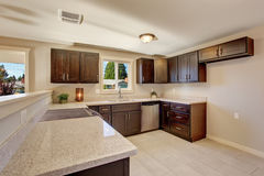 Elegant kitchen with stained cabinets. Royalty Free Stock Photography