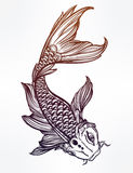 Elegant Koi carp fish illustration. Stock Photo