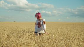 Elegant kvinna som går i vetefält på solnedgången lager videofilmer