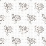 Elegant lace  pattern Stock Image