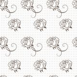 Elegant lace  pattern Royalty Free Stock Image