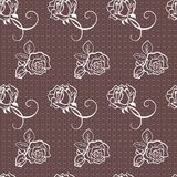 Elegant lace vector pattern Stock Photos
