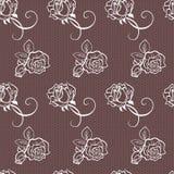 Elegant lace vector pattern Stock Photos