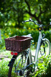Elegant ladies city bike with a basket Stock Photography