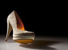 Elegant ladies shoes on a black background Royalty Free Stock Photo