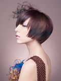 Elegant lady with short hairstyle. Portrait of elegant lady with stylish short hairstyle Stock Photo
