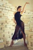 Elegant latin women dancer. Elegant latin woman dancer in shoes paradise Stock Photos
