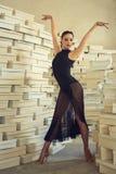 Elegant latin women dancer. Elegant latin woman dancer in shoes paradise Stock Image