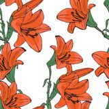 Elegant  lilly flowers pattern Stock Photo