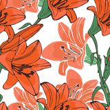 Elegant  lilly flowers pattern Stock Photography
