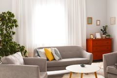 Elegant living room interior with comfortable sofa. And armchairs Stock Images