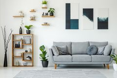 Elegant living room interior with a grey sofa, wooden shelves, p