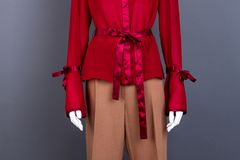 Elegant long sleeve blouse with bows. Stock Images