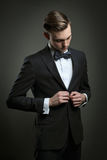 Elegant man dressing business suit Royalty Free Stock Photos
