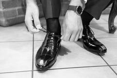 The elegant man laces shoes Stock Images