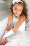 Elegant meisje Stock Fotografie