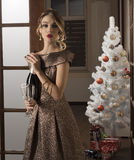 Elegant meisje in Kerstmistijd royalty-vrije stock afbeeldingen