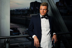 Elegant men Stock Photography