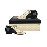 Elegant men's shoes on the box. Stock Photography