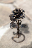 Elegant metal forged rose very similar to live Royalty Free Stock Photography