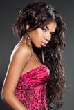 Elegant mulatto girl. With long hair Stock Photography