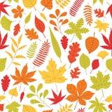 Elegant naadloos patroon met gevallen de herfstbladeren van divers type en kleur op witte achtergrond Herfstachtergrond met royalty-vrije illustratie