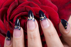 Elegant nail design Stock Photography