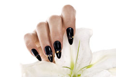 Elegant nail design Stock Images