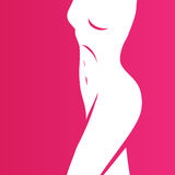 Elegant naked figure of woman Royalty Free Stock Photo