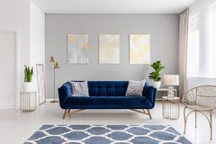 An elegant navy blue sofa in the middle of a bright living room interior with gold metal side tables and three paintings on a gray. Wall. Real photo. concept stock images