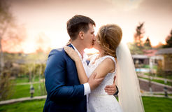 Elegant newly married couple kissing in park at sunset Royalty Free Stock Image
