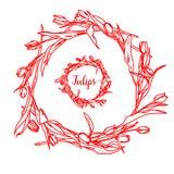 Elegant och gullig illustration Tulpan Utskrift för textil och industriella avsikter Och en härlig romantisk ram av royaltyfri illustrationer