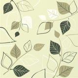 Elegant ontwerp vector illustratie