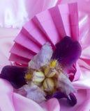 Elegant origami napkins Royalty Free Stock Photo