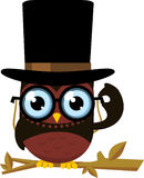 Elegant owl. Wise Intelligent Standing Owl Front view Top Hat Glasses,  illustration Royalty Free Stock Image
