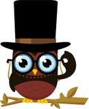 Elegant owl Royalty Free Stock Image