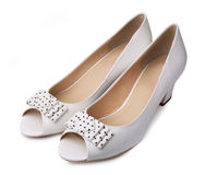 Elegant pair of woman's shoes Stock Images