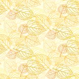 Elegant pattern with leafs drawn in thin lines Stock Photos