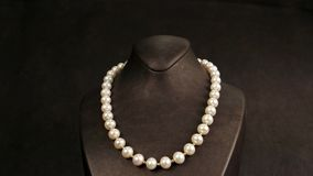 Elegant pearl necklace on a mannequin overview, jewelry made of pearls, classic jewelry for ladies, pearl necklace in