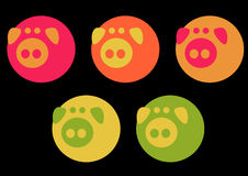Elegant pigs. An illustration of five elegant and colorful pigs royalty free illustration