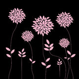 Elegant pink flowers design Royalty Free Stock Photos